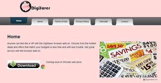 DigiSaver की तस्वीर