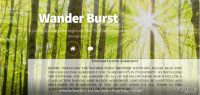 the-picture-showing-the-main-page-of-wander-burst-copy_in.jpg